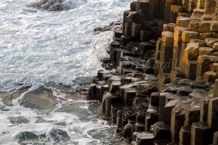 Photo of Antrim Giants Causeway Evening - D12535