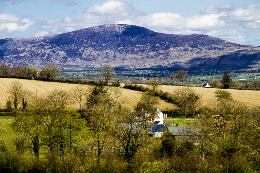 Photo of Kilkenny Blackstairs Mountains - D14822