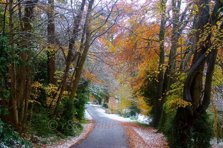 Photo of Slane Snow in Autumn - M02020