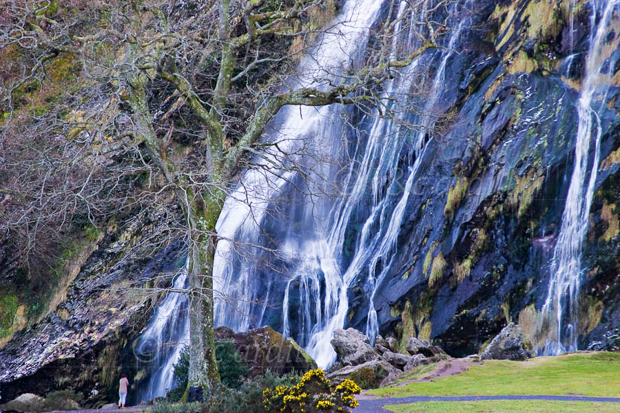 Photo of Wicklow Powerscourt Waterfall - M02628