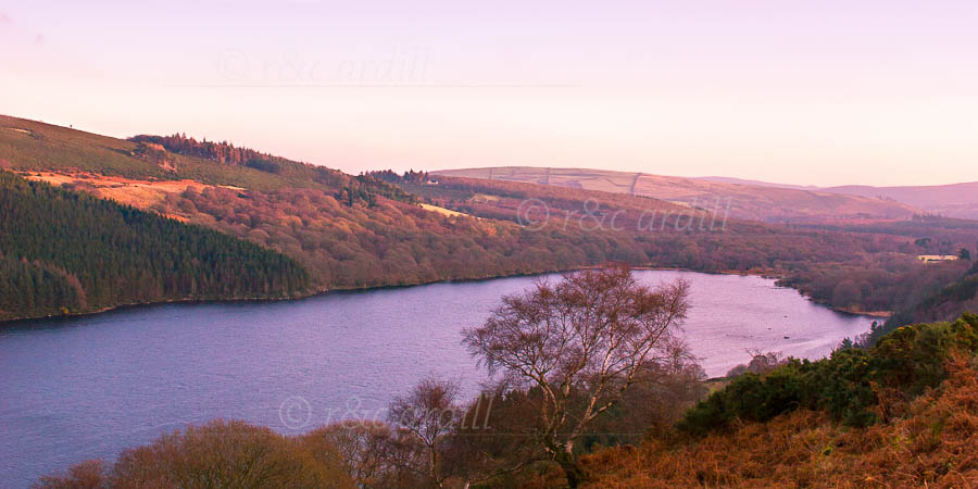 Photo of Wicklow Lough Dan - M02803