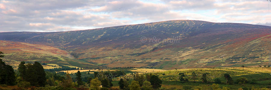 Photo of Wicklow Glen of Imaal - M18212