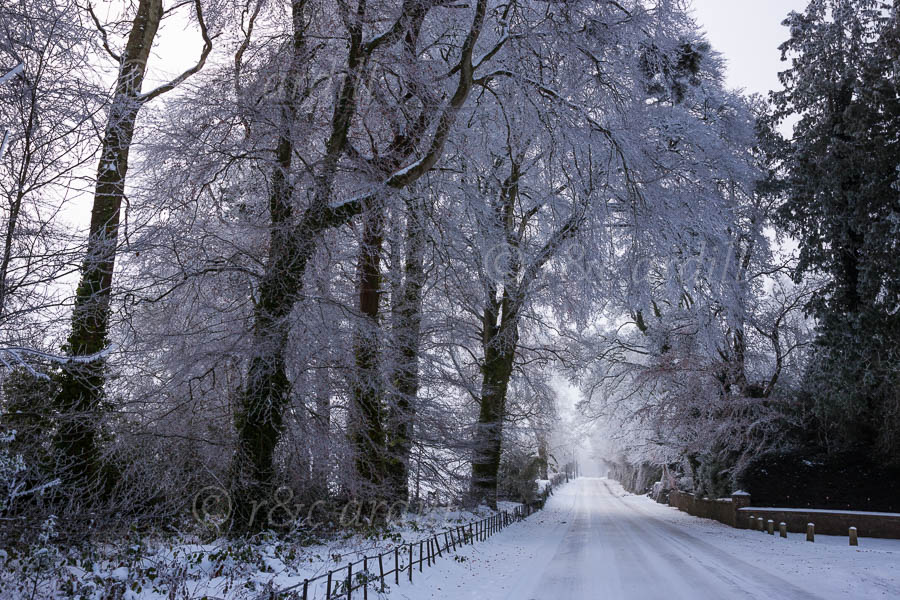 Photo of Meath Ardmulchan Winter Road - T13682