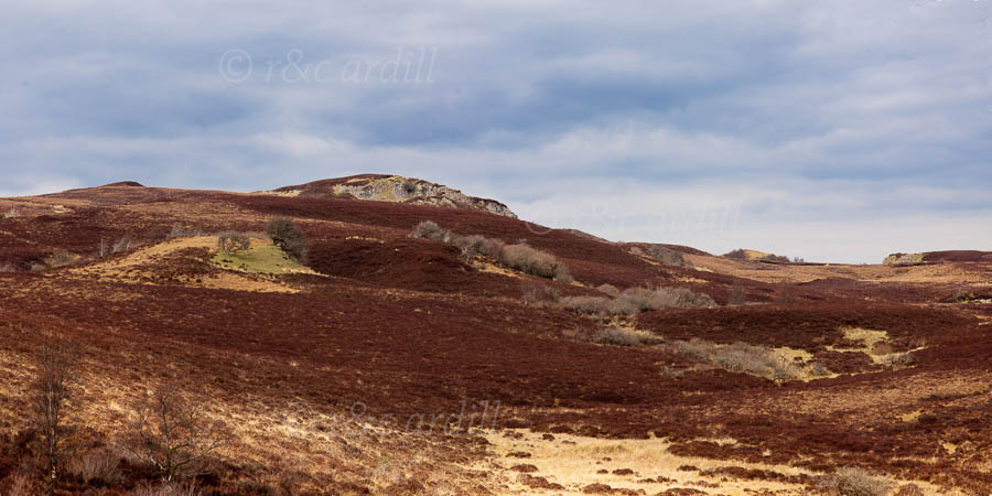 Photo of Cuilcagh Mountains - T24993