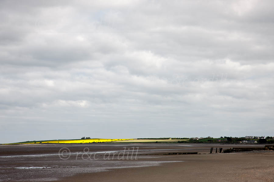 Photo of Louth Annagassan Strand - T25656