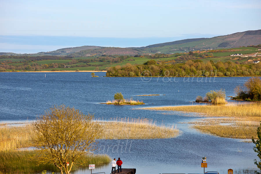 Photo of Clare Lough Derg and Reeds - T25829