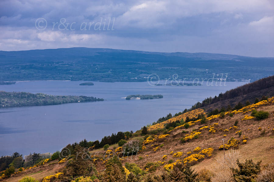 Photo of Tipperary Lough Derg - T26080