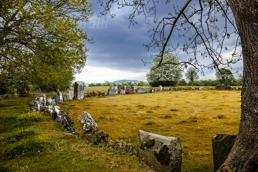 Photo of Limerick Grange Stone Circle - T26738