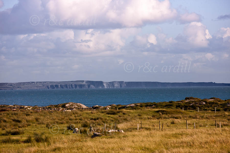 Photo of Galway View of Cliffs of Moher - T28334