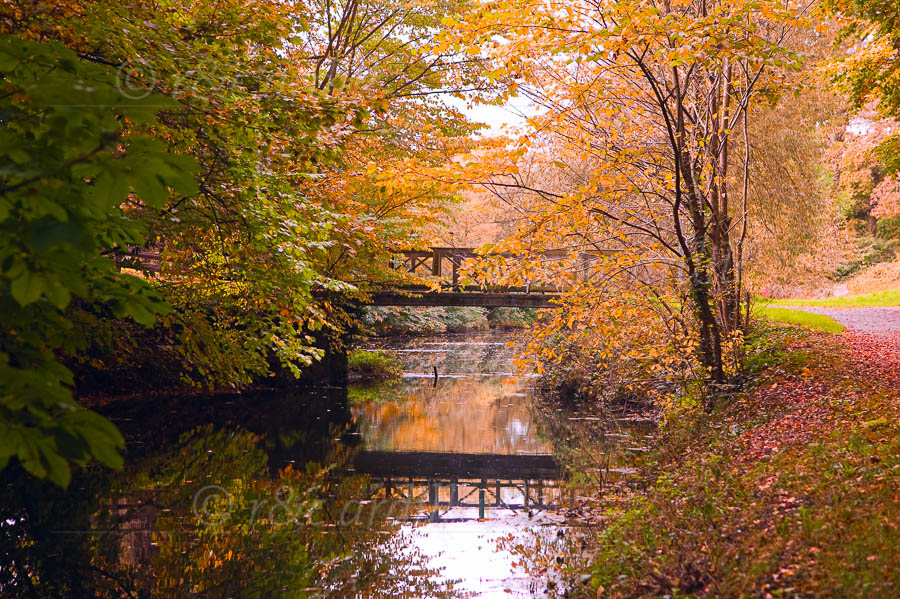 Photo of Boyne Canal Footbridge in Autumn - W20168
