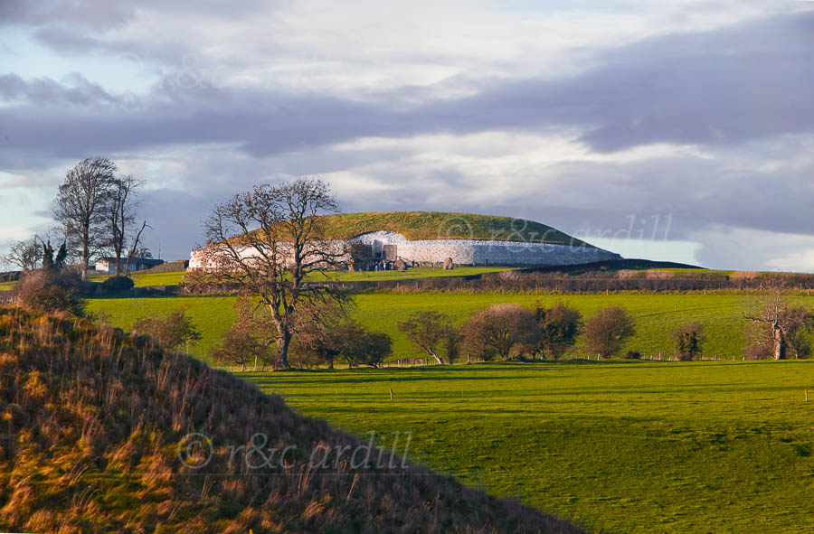 Photo of Newgrange - W21326