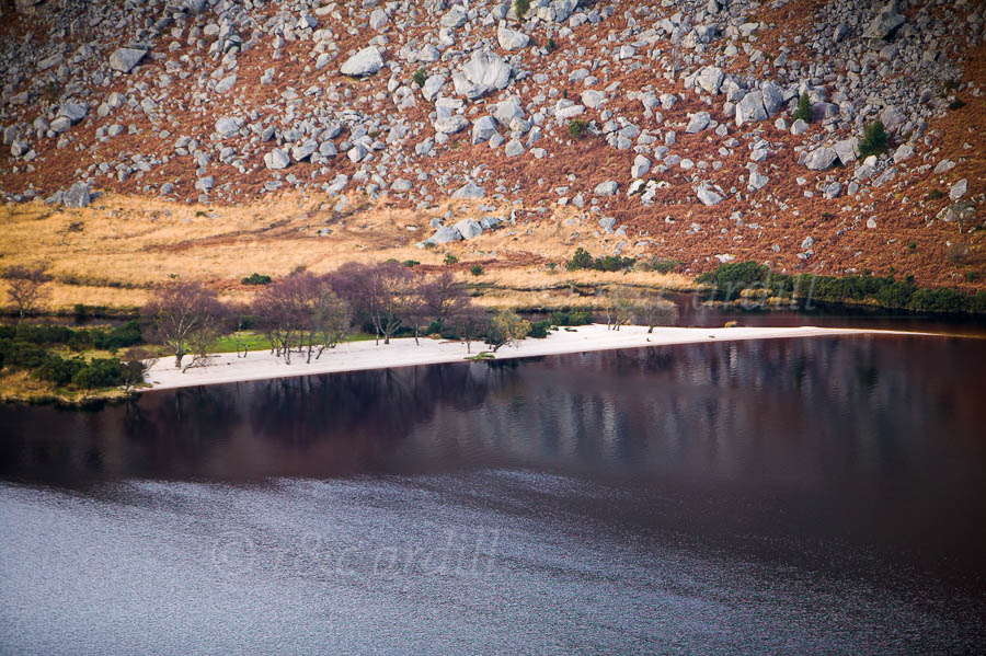 Photo of Wicklow Lough Dan Closeup - W25243