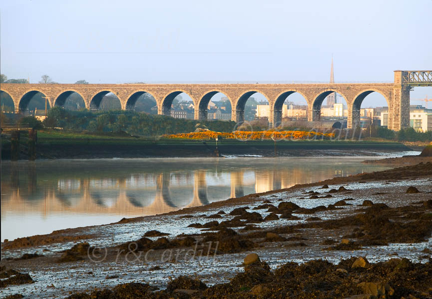 Photo of Drogheda Boyne Viaduct - W30673