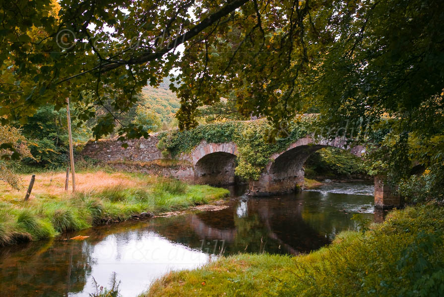 Photo of Wicklow Derrybawn Bridge - W33563