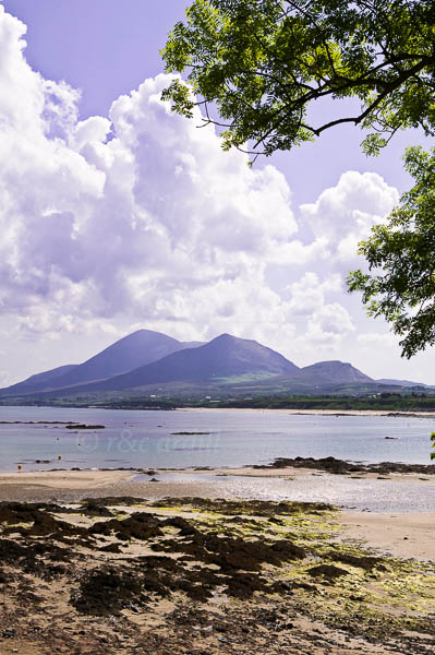 Photo of Croagh Patrick from Old Head - W42684
