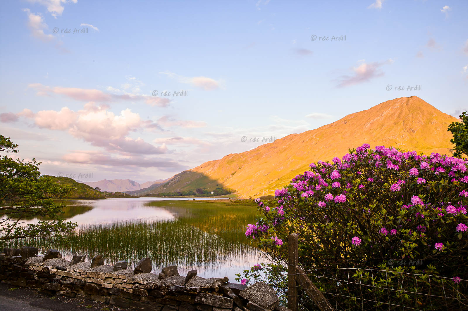 Photo of Connemara Kylemore Lough - W42786