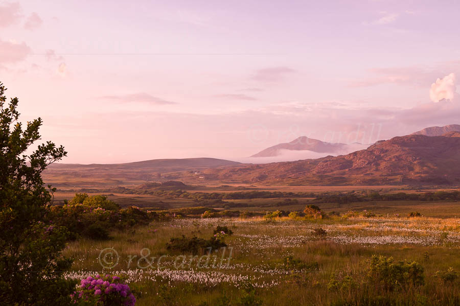 Photo of Galway Connemara Mweelrea from Letterfrack - W42798