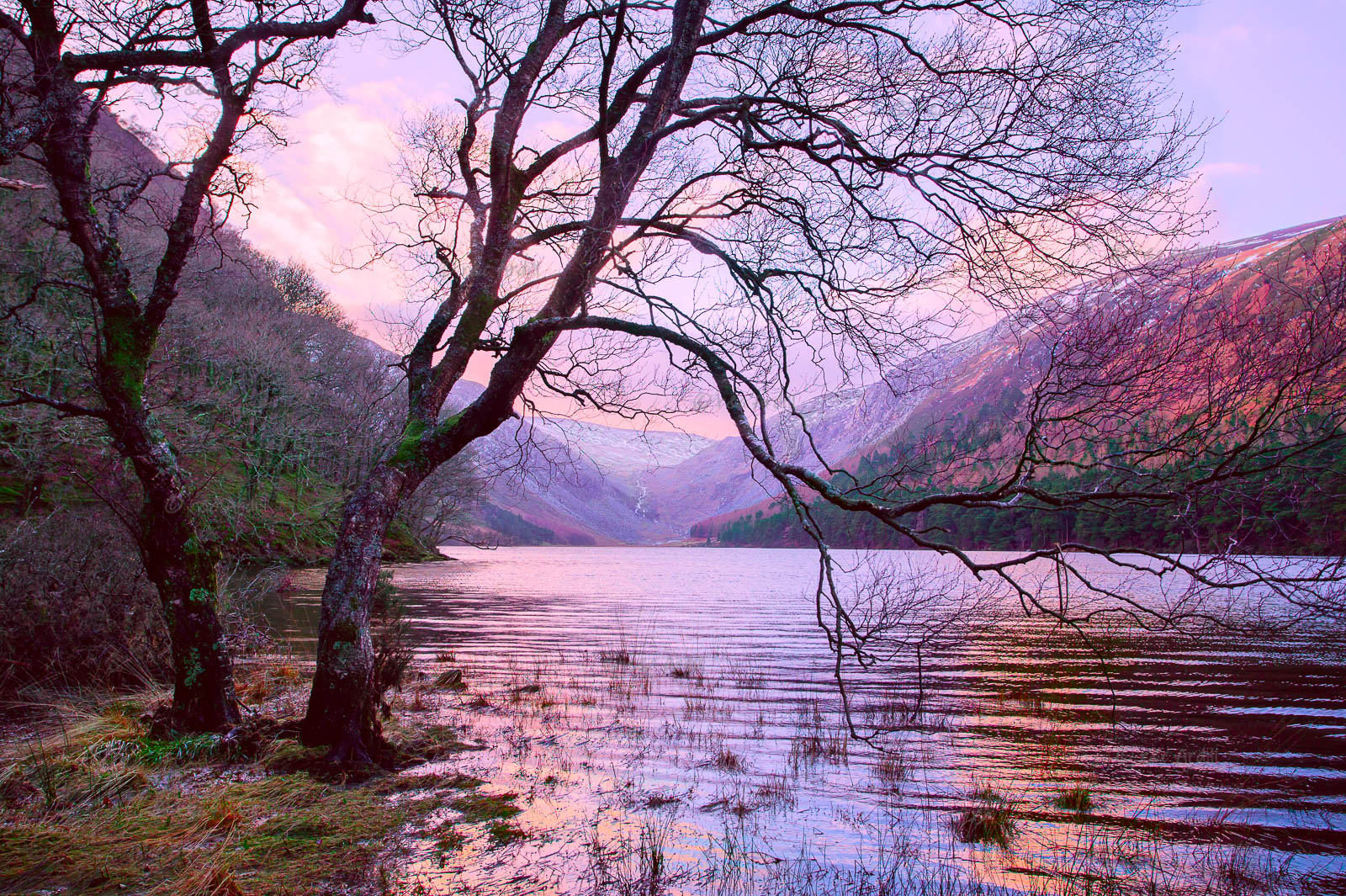 Photo of Wicklow Glendalough Upper Lake - W52730