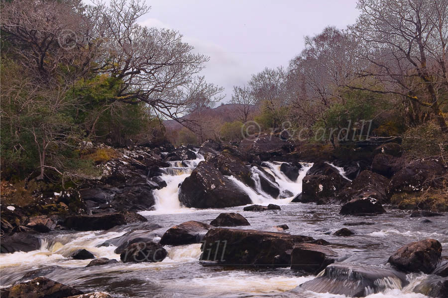 Photo of Kerry Owenreagh River - W56995