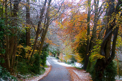 Photograph of Slane Snow in Autumn - M02020