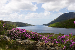 Photograph of Killary Harbour - M22124