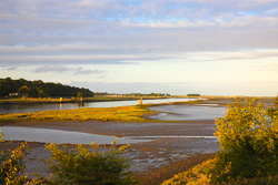 Photograph of Louth Boyne Estuary - T09767
