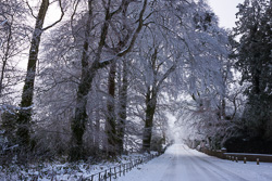 Photograph of Meath Ardmulchan Winter Road - T13682