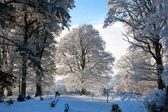 Photograph of Meath Dalgan Park in Snow - T13715