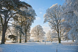 Photograph of Meath Dalgan Park in Snow - T13717