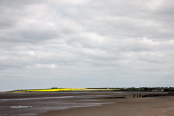 Photograph of Louth Annagassan Strand - T25656
