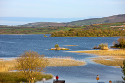 Photograph of Clare Lough Derg and Reeds - T25829