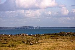 Photograph of Galway View of Cliffs of Moher - T28334