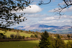 Photograph of Kilkenny Blackstairs Mountains - T40962