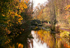 Photograph of Boyne Canal at Oldbridge - W23500