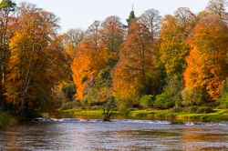Photograph of Boyne Autumn at Ardmulchan - W23896