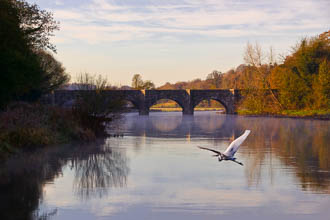 Photograph of Boyne Stackallan Bridge - W23999