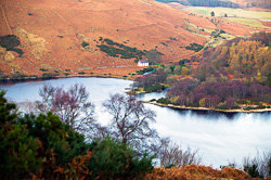 Photograph of Wicklow Lough Dan - W25220