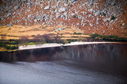 Photograph of Wicklow Lough Dan Closeup - W25243