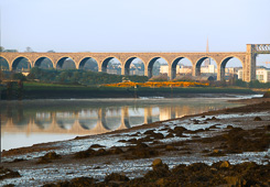 Photograph of Drogheda Boyne Viaduct - W30673