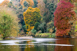 Photograph of Boyne Autumn - W39562