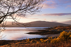 Photograph of Dunmanus Bay at Dawn - W54755