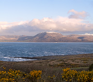 Photograph of Bantry Bay and Hungry Hill - W55400