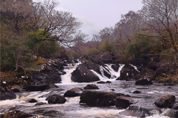 Photograph of Kerry Owenreagh River - W56995