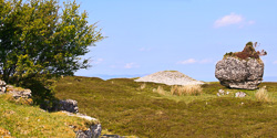 Photograph of Sligo Corrowkeel Cairn G - W60794