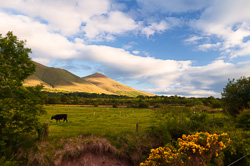 Photograph of Galtee Mountains - X68680